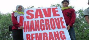 Pegiat lingkungan di Rembang mengkampanyekan penyelamatan hutan bakau, baru – baru ini.