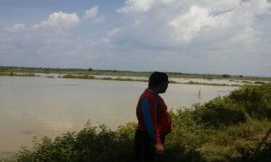 Tambak di Desa Purworejo Kec. Kaliori terendam banjir, Kamis (05/04).