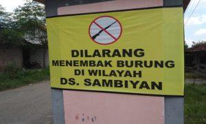 Larangan menembak burung di Desa Sambiyan Kecamatan Kaliori.