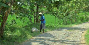 Warga mencari rumput di dekat akses jalan masuk menuju Dusun Ngaglik.