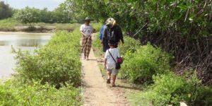 Salah satu sudut Desa Dasun Kecamatan Lasem, masyarakatnya mayoritas mengandalkan sektor kelautan.