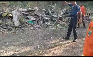 Petugas Damkar menangkap ular di rumah warga Kelurahan Magersari, Rembang.