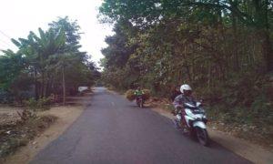 Jalan Pamotan – Gunem yang akan dilebarkan tahun ini.