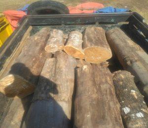 Barang bukti truk bermuatan kayu jati diamankan aparat Polres Rembang.