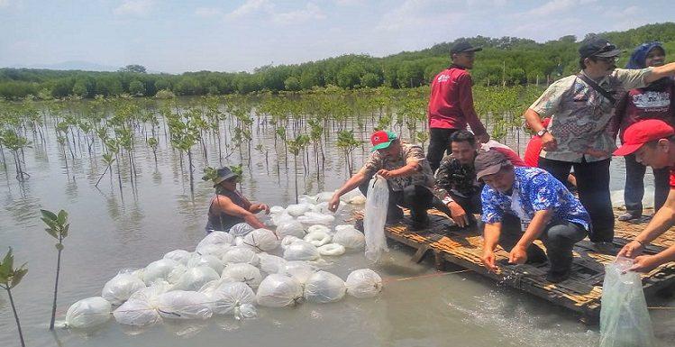 600 Ribu Benih Ikan Ditebar, Dislutkan Anggap Lokasi Ini Paling Tepat