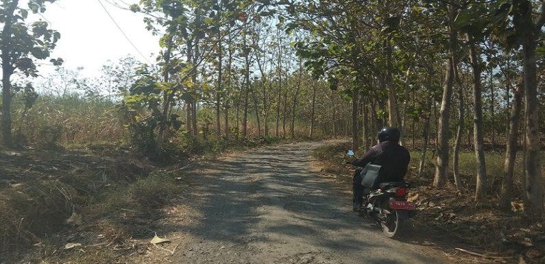 Soal Kemiskinan Dan Jalan Semulus Pipi Syahrini, DPRD Mengkritisi