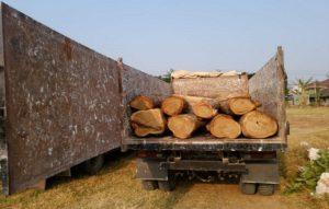 Polisi mengamankan barang bukti truk beserta gelondongan kayu jati di Mapolres Rembang, Rabu (03/10).