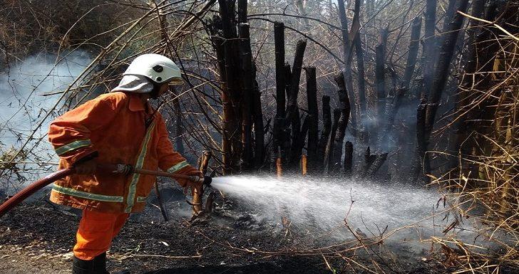 Kecerobohan Yang Selalu Berulang, Picu Kebakaran Di Sejumlah Lokasi