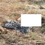 Mayat yang ditemukan di Desa Punjulharjo, Rembang, Senin pagi (15/10).