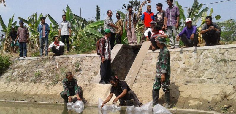 Sumbang Ribuan Ikan Nila, Dislutkan Ungkap Misi Budidaya
