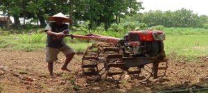 Profesi petani di Kabupaten Rembang, didominasi dari kalangan tua.