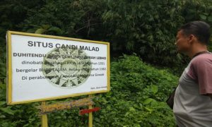Seorang pengunjung mengamati penunjuk arah salah satu peninggalan sejarah di Desa Gowak, Kecamatan Lasem.