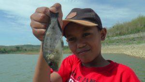 Ikan mujahir di Bendungan Lodan, Sarang, banyak yang mati, Senin (17/12).