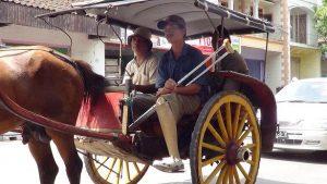 Seorang penyandang disabilitas di Kabupaten Rembang naik dokar.