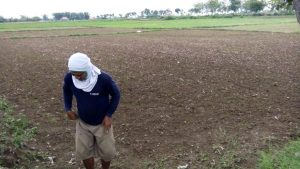 Lahan persawahan di Desa Meteseh, Kecamatan Kaliori masih kering akibat rendahnya curah hujan.