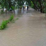 Banjir menggenangi akses jalan di Desa Dadapmulyo, Kecamatan Sarang, Jum'at pagi (facebook).