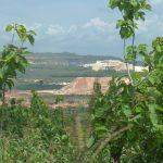 Sebuah lokasi tambang di Kabupaten Rembang.