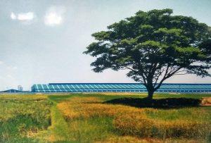 Potret pabrik dan sektor pertanian di Kabupaten Rembang.