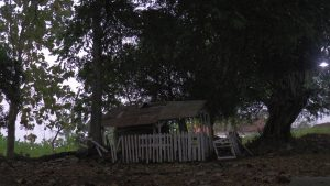 Kawasan Cungkup di Desa Besowo, Kecamatan Jatirogo, Kabupaten Tuban, Jatim.