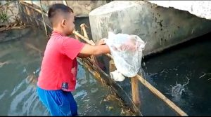 Keramba ikan dan aktivitas bersih-bersih sungai di Desa Pamotan.