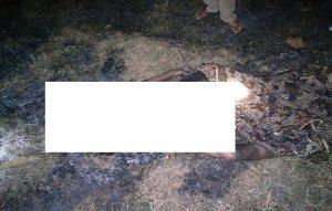 Korban terbakar di tengah lahan jati miliknya, di Desa Timbrangan, Kecamatan Gunem.