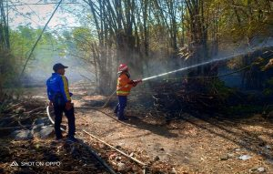 Kebakaran rumpun bambu di Desa Karangsekar, Kecamatan Kaliori. (Foto atas) Upaya pemadaman di gudang Mustika Diesel, Senin malam.