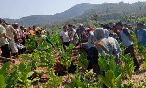 Warga mengerubuti jenazah korban di TKP Desa Suntri, Kec. Gunem, Jum'at (06/09).