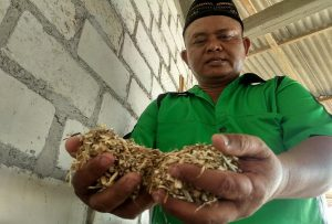 Marjuki, warga Desa Randuagung, Kecamatan Sumber menunjukkan bahan baku pakan ternak usai digiling.