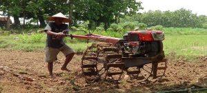 Potret aktivitas petani di Kab. Rembang.