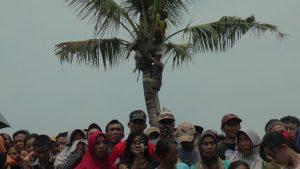 Antusias warga melihat rekonstruksi kasus pembunuhan di Desa Suntri, Kecamatan Gunem. Beberapa warga rela naik ke atas pohon kelapa, Kamis (05/12).
