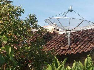 Sarang tawon yang meresahkan warga Dusun Sumurboto. (Foto atas) Petugas Polsek dan pegawai Kecamatan Bulu mengecek lokasi, Selasa (17/12).