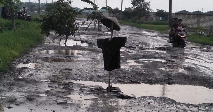 Wajah Baru Jalan Lingkar, Warga Protes Dengan Pohon Beringin
