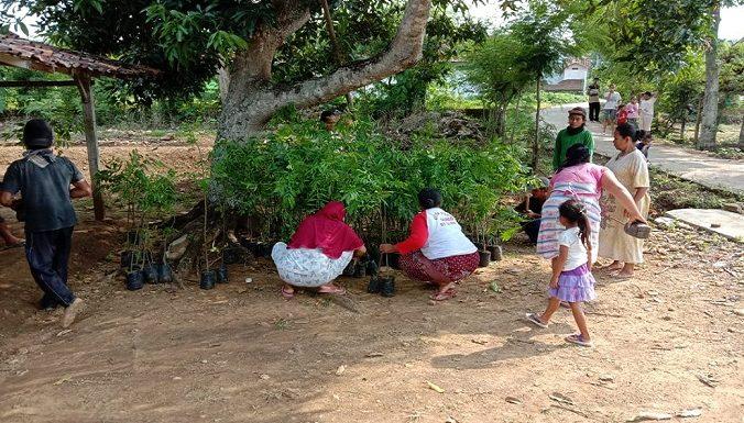 Dusun Terpencil : Demi Ngotoko Berdaya, 3 Potensi Keren Digarap