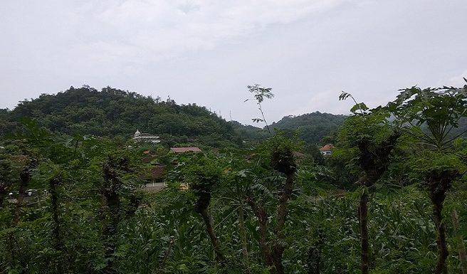 Akses Jalan Dusun Terpencil, Kades Angkat Bicara