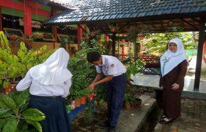 Seperti ini suasana di depan kelas SMP N I Pancur. (Foto atas) Kepala SMP N I Pancur, Erna Nur Mutia menunjukkan bendera hijau yang terpasang di pintu kelas.
