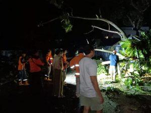 Petugas BPBD Kabupaten Rembang memotong pohon tumbang di Desa Ngemplak, Kecamatan Lasem, Kamis malam (09/04).