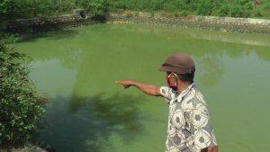 Embung di Desa Kuangsan Kecamatan Kaliori yang merenggut 2 korban jiwa.