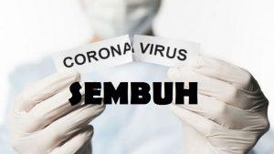 Ilustrasi sembuh dari virus corona.