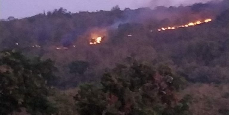 Kebakaran Di Gunung Bugel Meluas, 3 Dampak Ini Yang Dikhawatirkan Pihak Desa