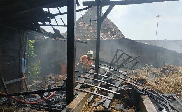 Dua Sapi Nyaris Terpanggang, Bangunan Terpaksa Dirobohkan