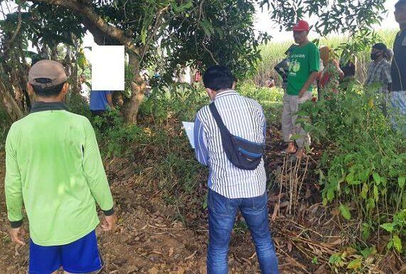 Kakek Gantung Diri Di Pohon Mangga, Polisi Temukan Barang Bukti