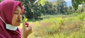 Serba serbi Desa Kajar, Kecamatan Lasem sebagai penghasil bunga terbesar di Kabupaten Rembang.