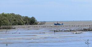 Perahu nelayan melintas di tanggul bibir pantai yang jebol, dekat muara sungai Tunggulsari, Kecamatan Kaliori. (Foto atas) Sekdes Tunggulsari, Kusen menunjukkan lokasi, Kamis (05/08).