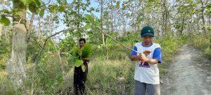 Mbah Legiman dan Bu Sumini mencari daun jati. (Foto atas) Suasana rumah diapit lebatnya hutan milik Perhutani.