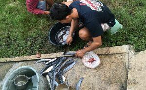 Proses pengolahan ikan lele. (Foto atas) Muhammad Rubihandi menunjukkan keripik lele yang sudah jadi.